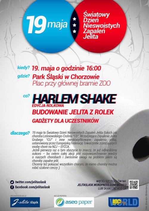 ibdday2013_poster