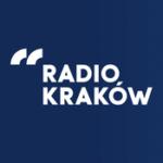 """XII Dni Edukacji oNZJ tematem audycji """"Przedhejnałem"""" wRadiu Kraków"""